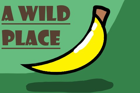 A Wild Place