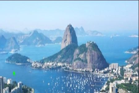 O Bicho no Rio
